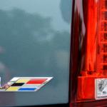 LPE-Cars-Coffee-33